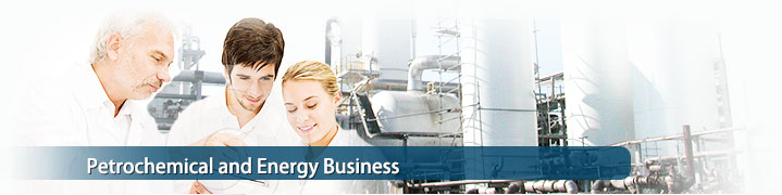 Petrochemical and Energy Business